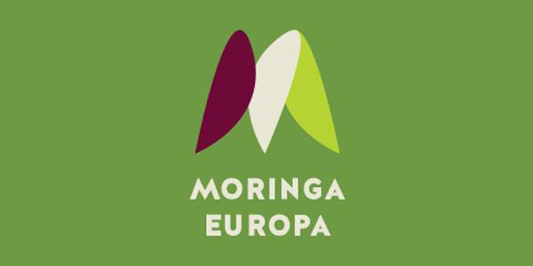 moringa-vorschau